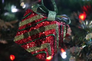 Present hanging from tree