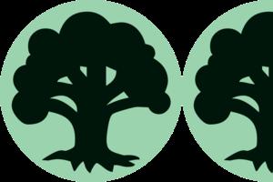 1.5/5 Trees